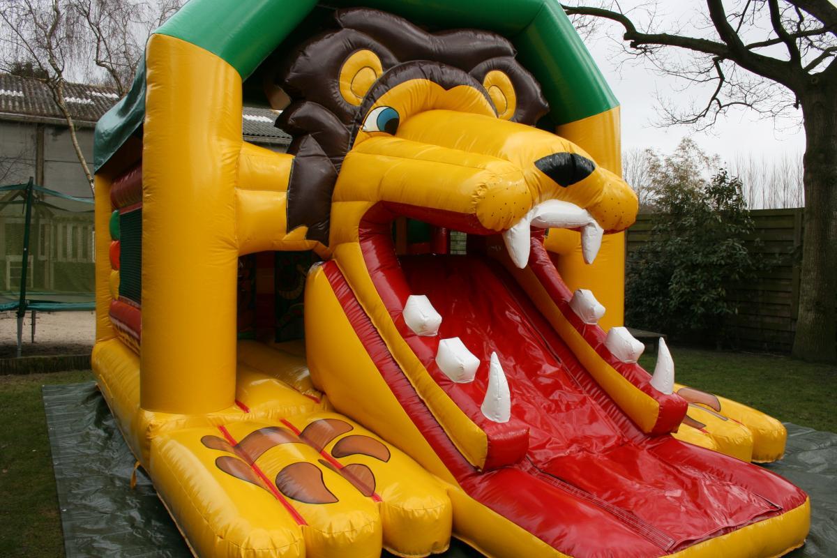 Springkasteel 39 de leeuw 39 verhuur springkastelen en feestorganisatie regio oudenburg bumpi - Tafel leeuw ...